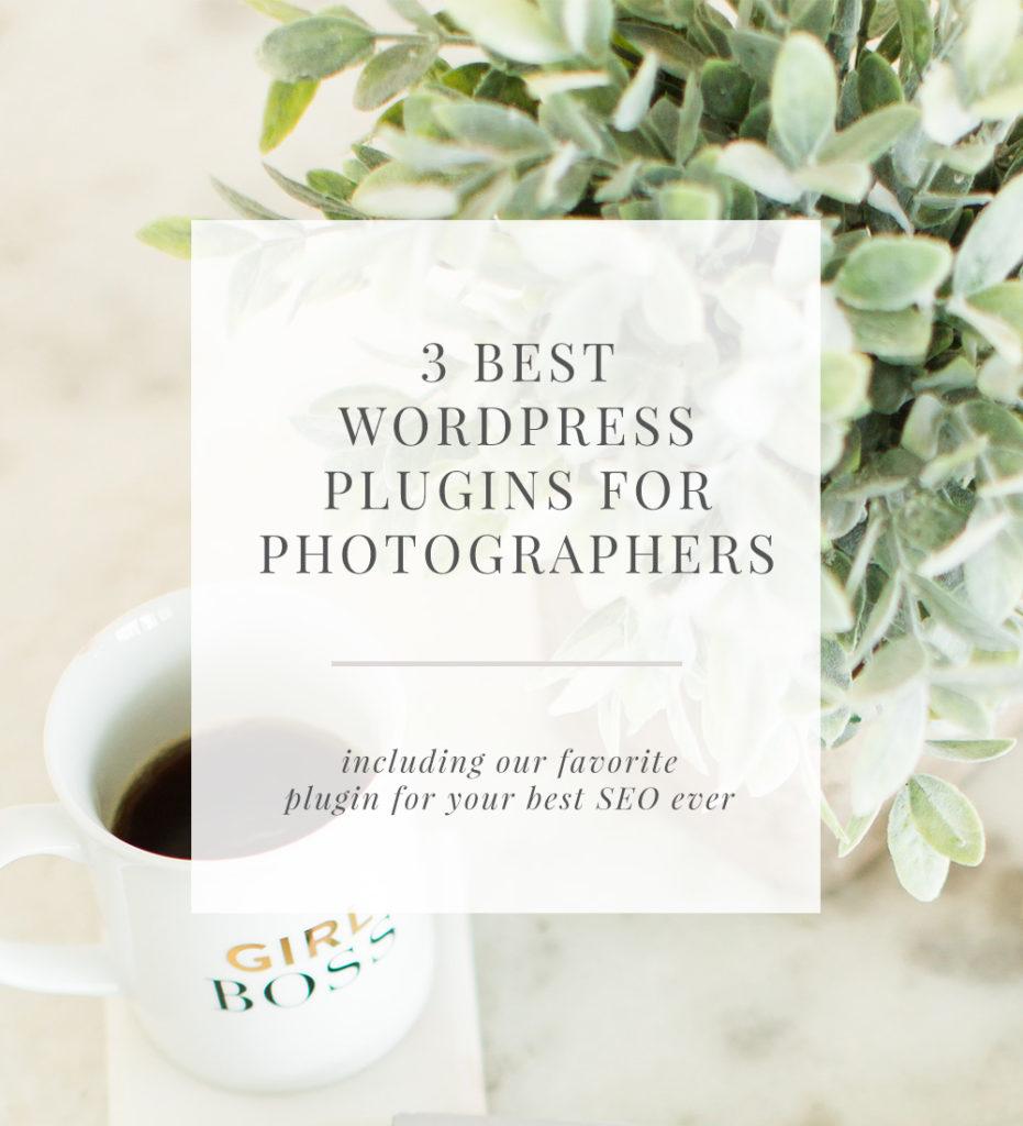 3 best WordPress plugins for photographers