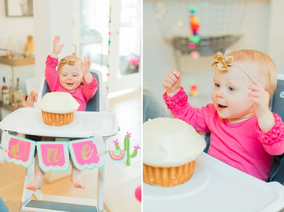 First Birthday Crave Cupcakes Smash Cake