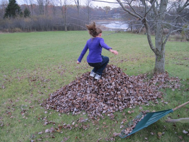 Mulching Fall Leaves