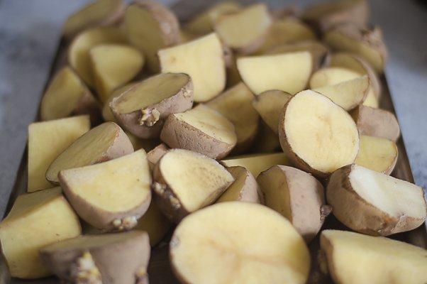 cut seed potatoes
