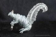 Squirrel CR 8