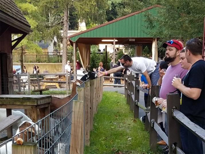 Oktoberfest 2017 at Elmwood Park (63)