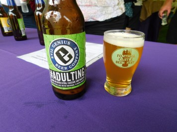 Fonthill Castle Beer Festival 2018 044 Evil Genius Brewing #Adulting (Large)