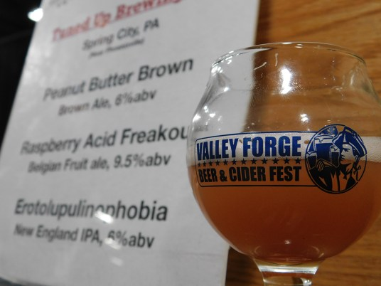Valley-Forge-Craft-Beer-Fest-2018_120118-134705