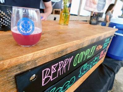Phoenixville-Beer-Fest-2019_20190511_152745
