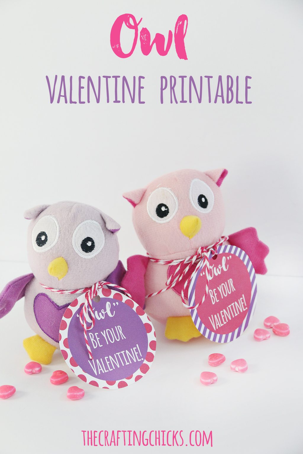 Owl Valentine Printable The Crafting Chicks
