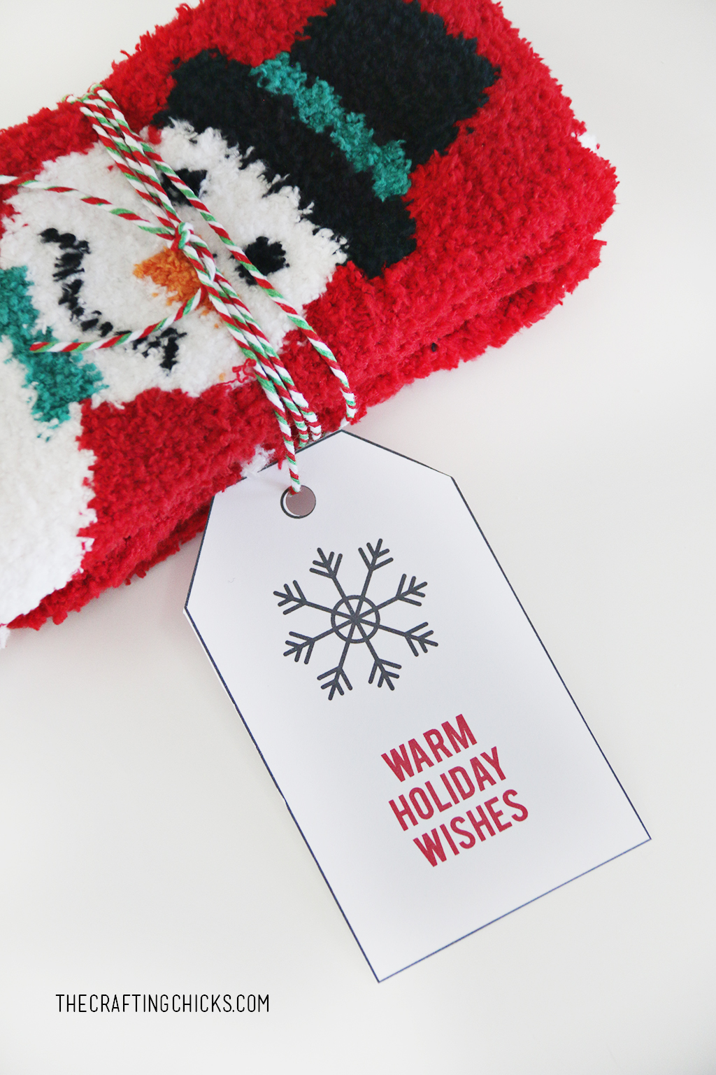 12 Christmas Tag Printables