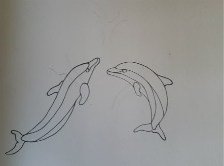 Dolphin Outline drawing