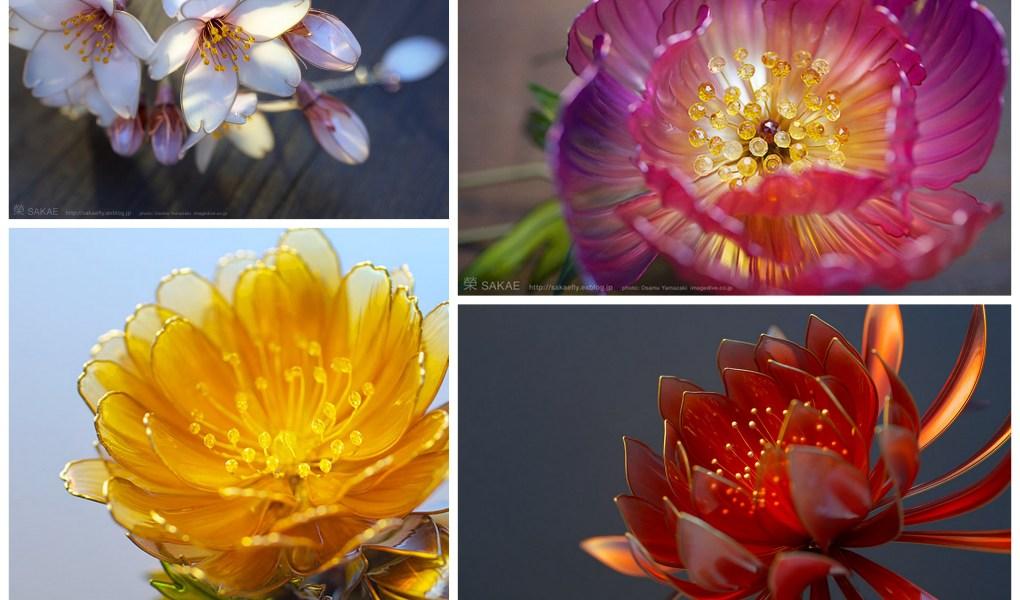 kanzhashi flowers sakae