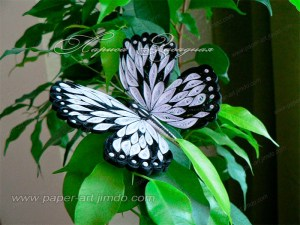 quilled butterfly tutorial with layour board