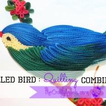 quilled bird quilling combing technique tutorsdsfsfdial (23)