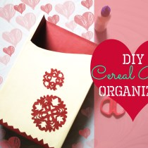 Cereal Box DIY Organise (6)