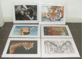 Christine Pettet Art prints for sale
