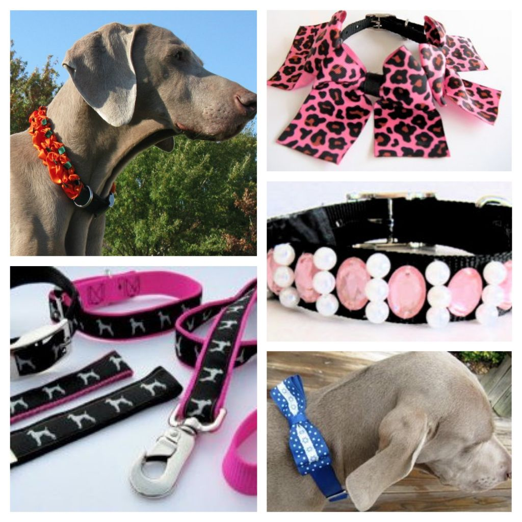 Zamora S Dog Collars