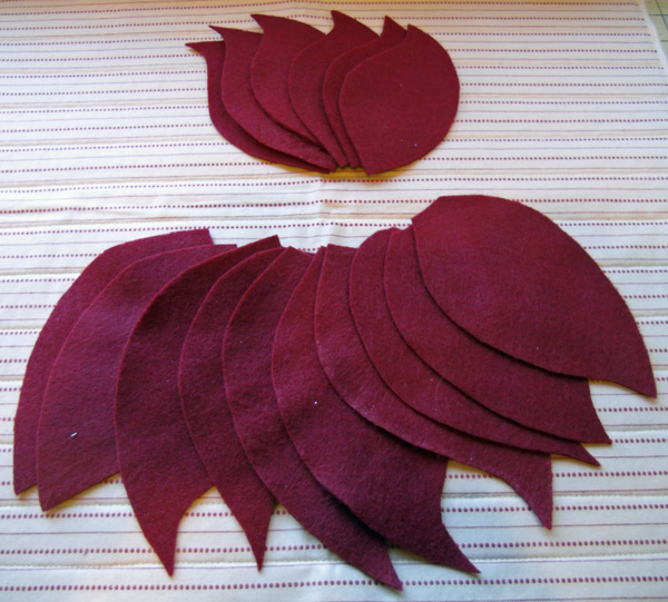 poinsettia petals all cut
