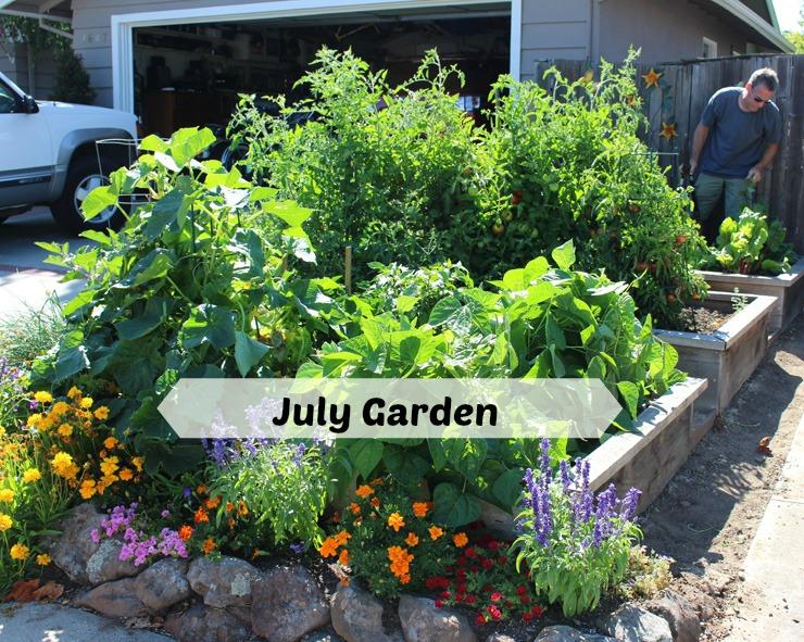 garden july a