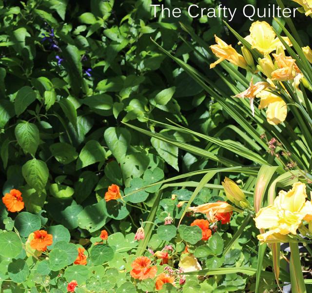 back flowers copy