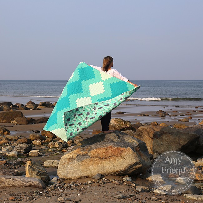 What Will You Do For a Quilt Photo? by Amy at During Quiet Time