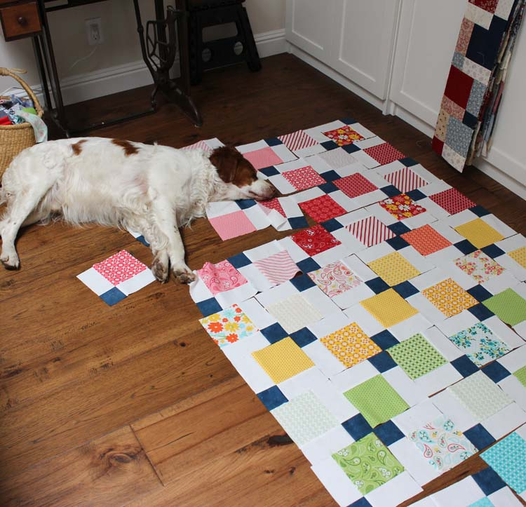 Cooper likes to be in the middle of the action during quilting time.