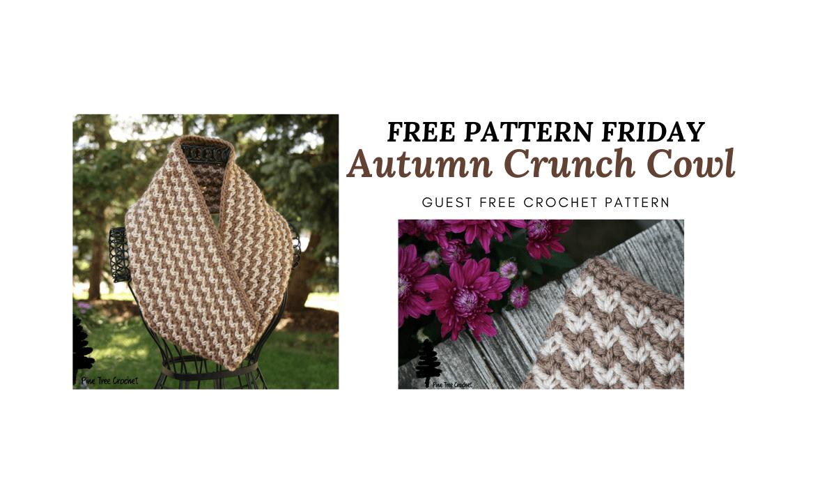 Autumn Crunch Cowl on www.thecraftytherapist.com