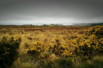 Magnificent Connemara
