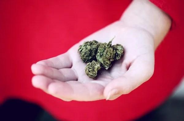 How Medical Marijuana can help With PTSD