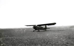 Piper Cub 01