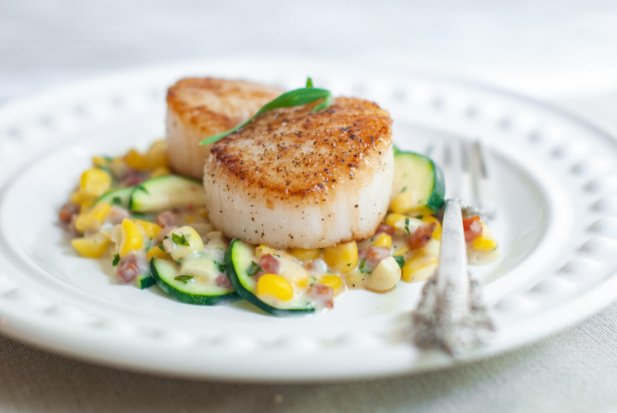 A white plate with a creamy sauce of corn, zucchini and pancetta on the bottom and two seared scallops on top.