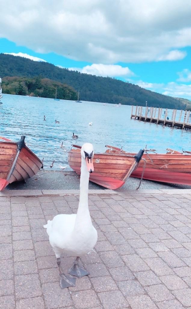 Windermere, The Lake District, U.K