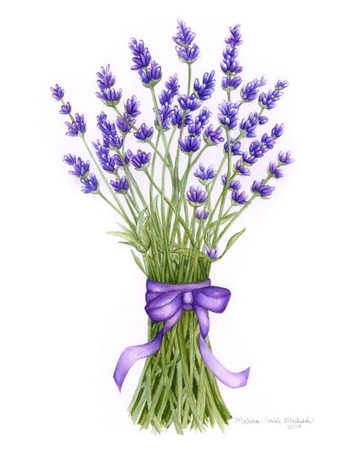 Marcia_LavenderBouquet_11x14