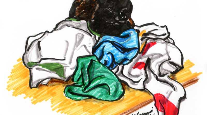 brush marker sketch of cat on dishtowels