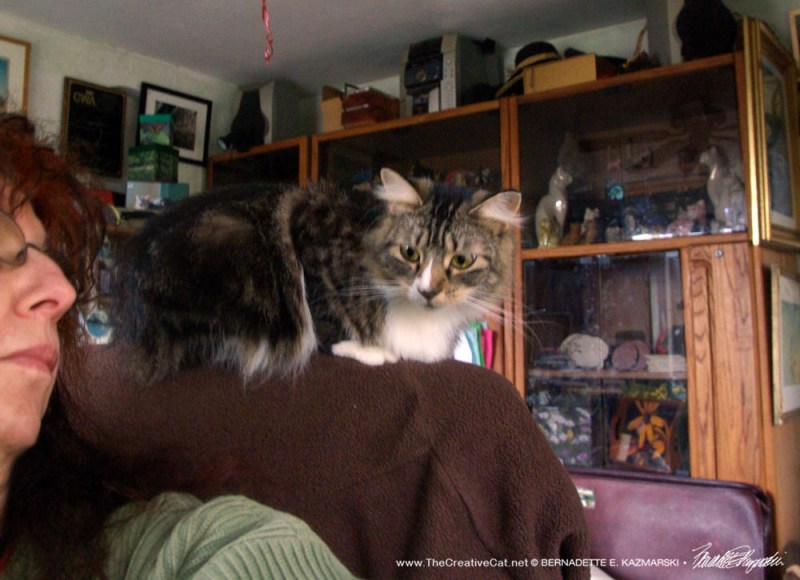 Supervisor Cat