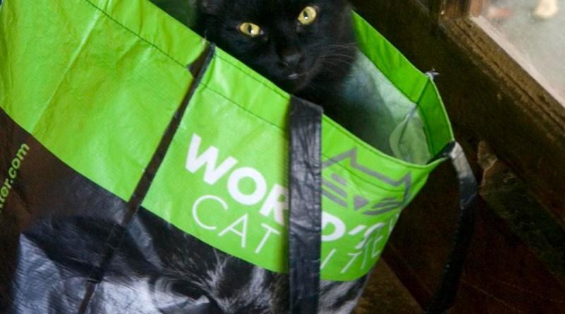Basil in a bag.
