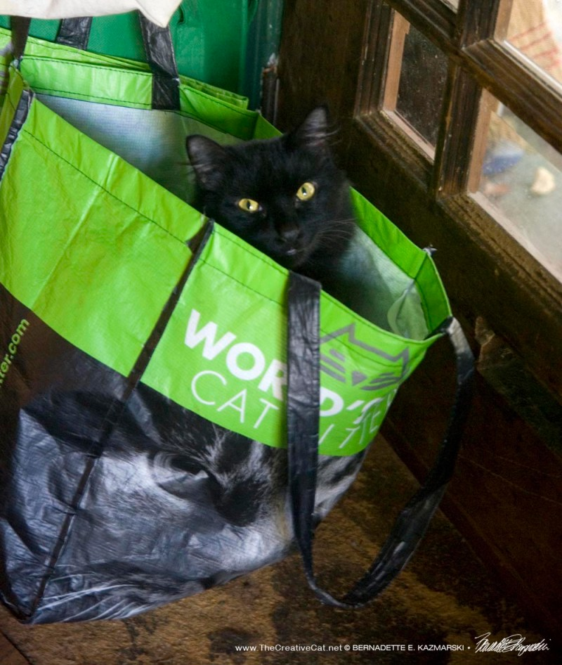 Basil in a bag.