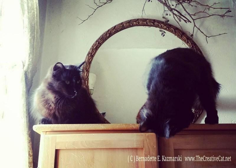 Hamlet and Basil.