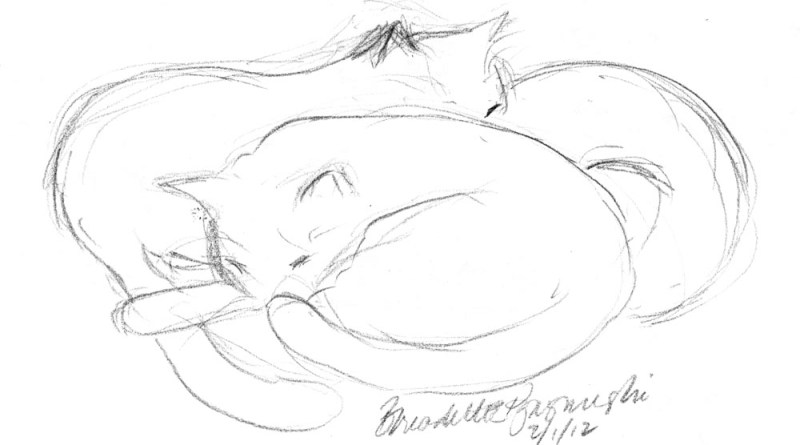 """Another Nap"", pencil, 10"" x 8"" © Bernadette E. Kazmarski"