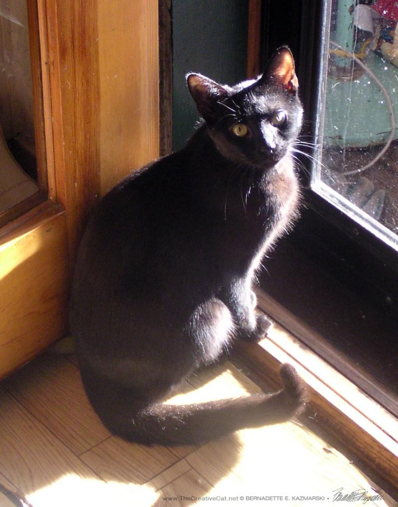 Lucy at the door.