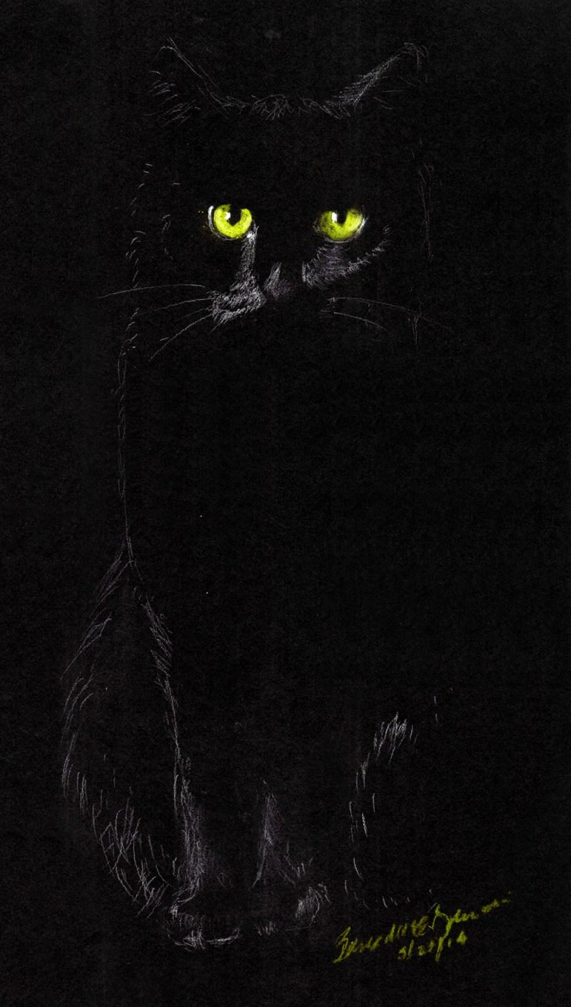 sketch of black cat on black paper