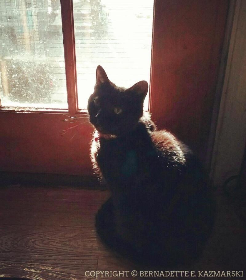 Mimi at the door.