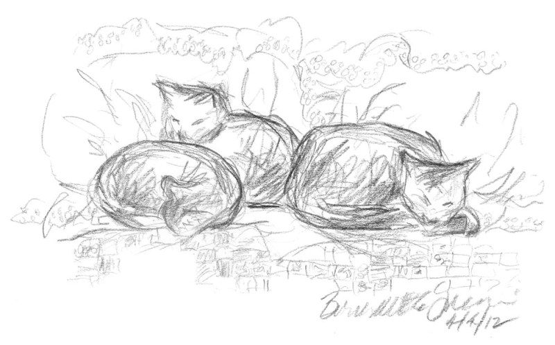 Curled on the Bed, pencil © B.E. Kazmarski