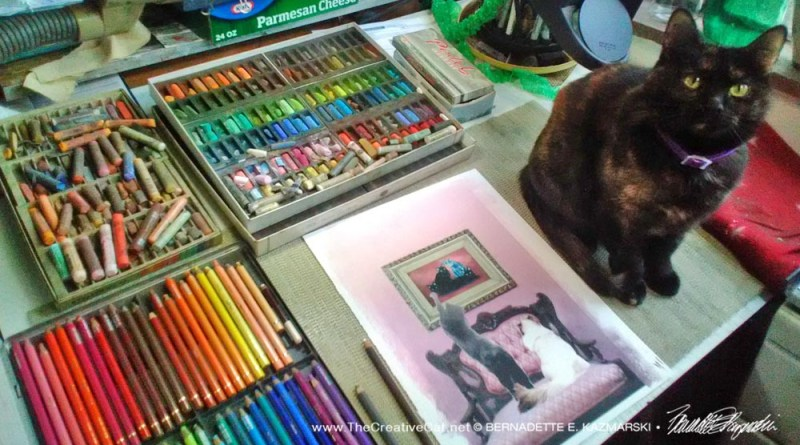 tortoiseshell cat with illustration and pastels