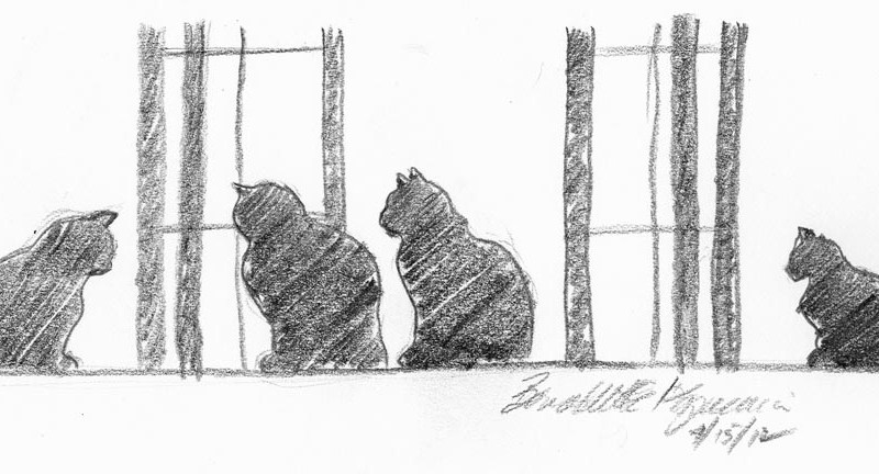 "Four Cats at the Window, pencil, 9"" x 4"" © Bernadette E. Kazmarski"