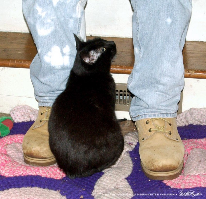 Mimi had his number right away, even though she was barely bigger than his boots.