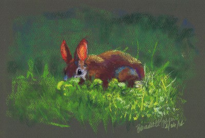 pastel sketch of rabbit in yard.