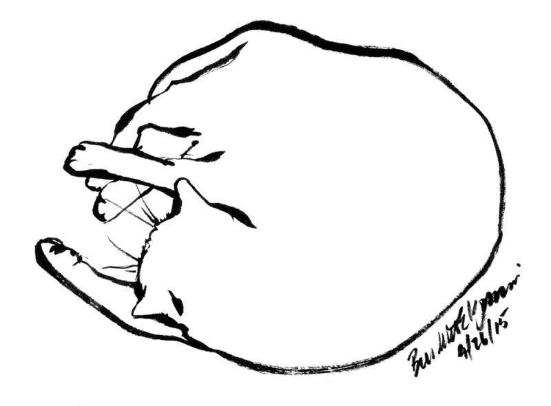 """""""Big Nap"""", brush pen, 8"""" x 6"""" © Bernadette E. Kazmarski"""