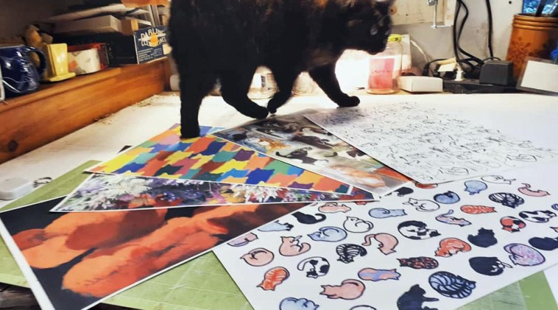 cat and new patterns