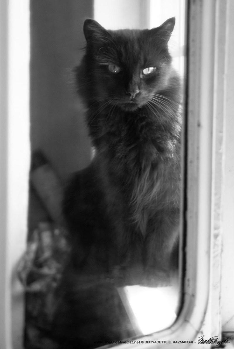 Hamlet in the mirror.