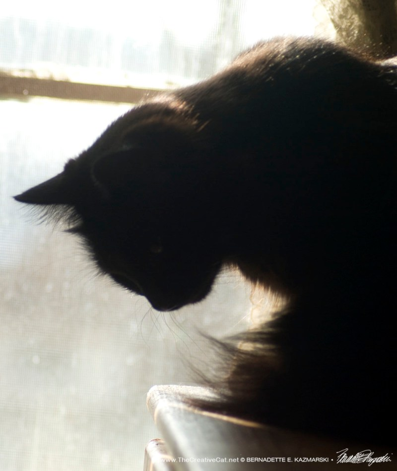 Hamlet at the window, 4