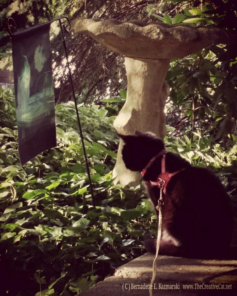 Mimi guards the porch.