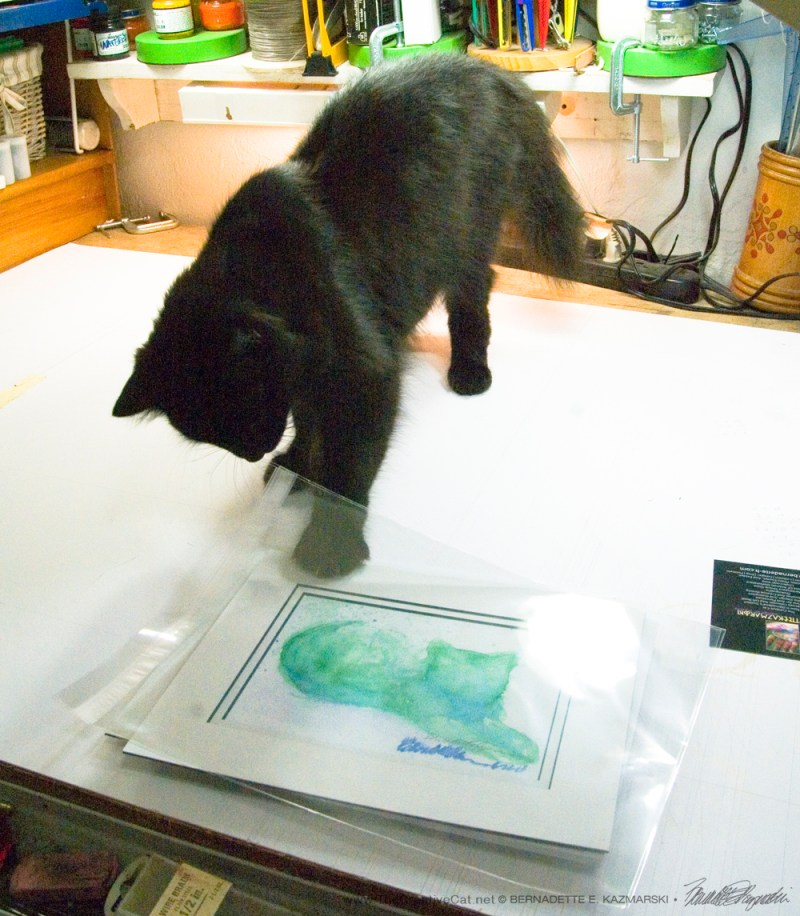 Helping with a print